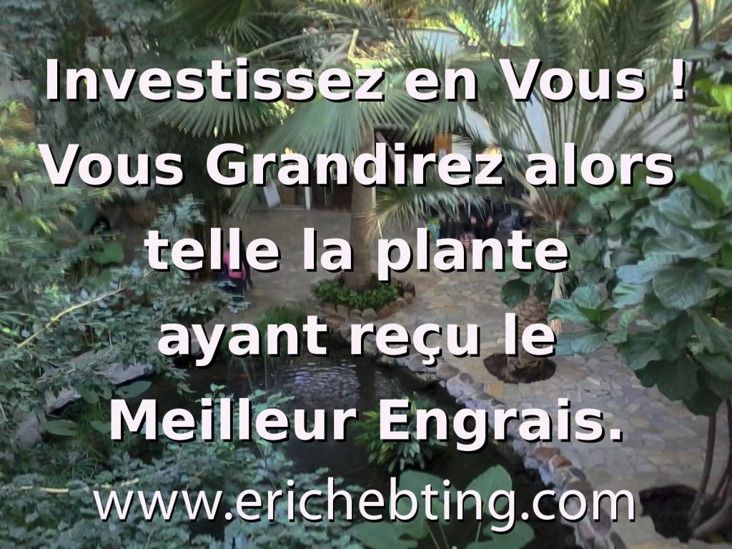 Investissez en Vous ! Vous Grandirez alors telle la plante ayant reçu le Meilleur Engrais.