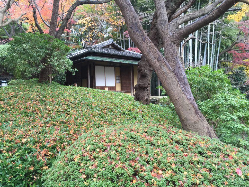 Escapade à Tokyo jour 1 Maisonnette Typique
