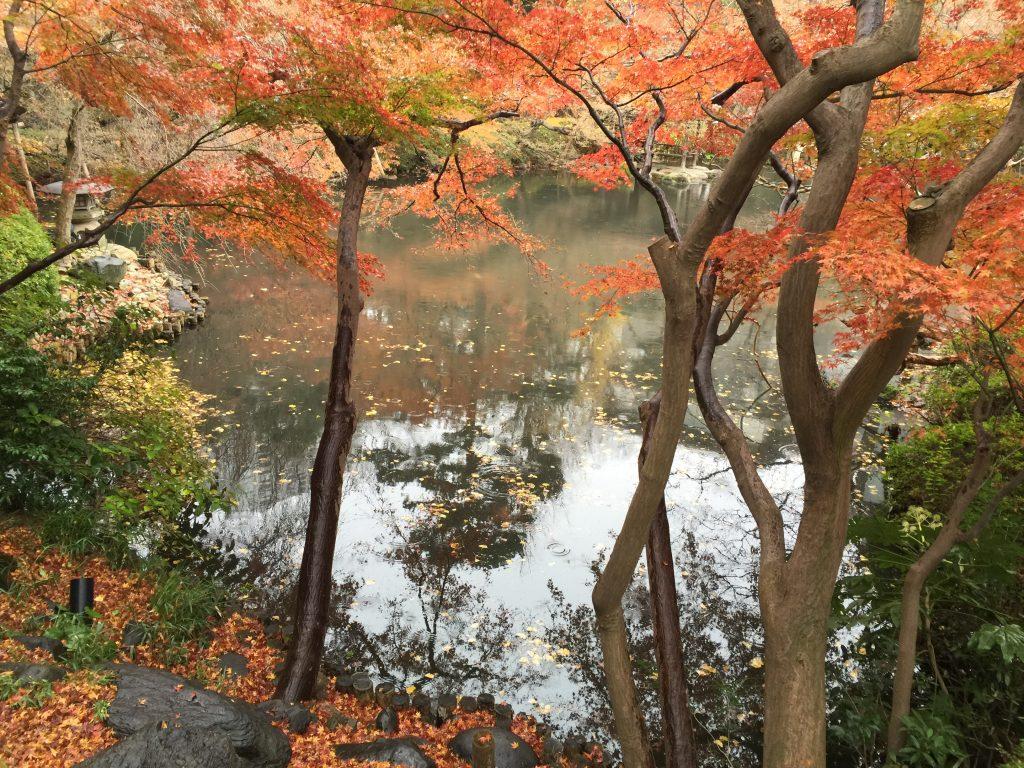 escapade à Tokyo Jour 1 : Happo en, une perle de verdure