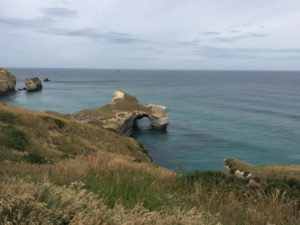 La Péninsule de l'Otago (Otago Peninsula)